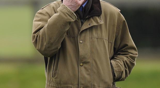 Big call: Willie Mullins will make decision on Hurricane