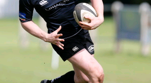 In contention: David Whann is fit for Ballymena after injury
