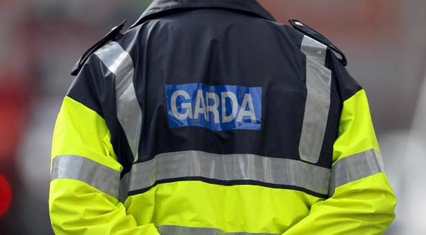 A three-year-old child and a nine-year-old child are both in serious condition in hospital after a road road crash