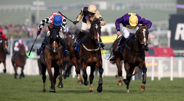 Close call: Lord Windermere (right), with Davy Russell on board, edges out On His Own (centre) to win the Cheltenham Gold Cup.