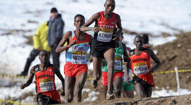 Star attraction: Japhet Korir will again race at Greenmount
