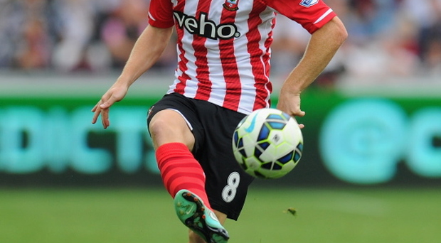 Northern Ireland captain Steven Davis is in excellent form for Southampton