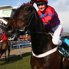 Barry Geraghty pats Sprinter Sacre after victory in the Queen Mother Champion Steeple Chase