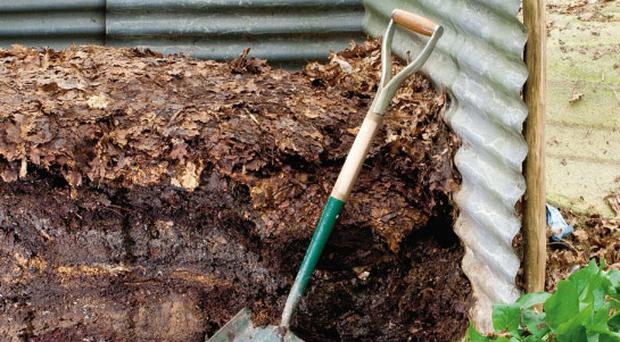 Home Made: A compost heap