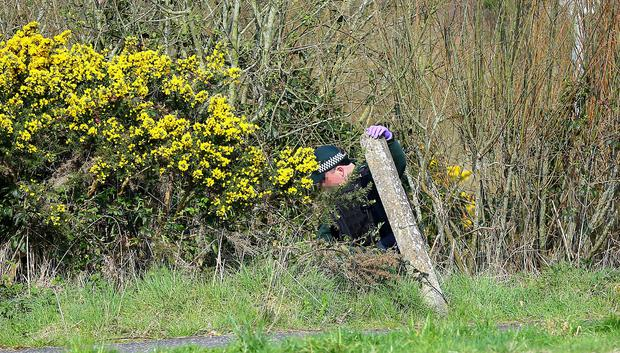 Pictured is police sniffer dogs at the scene of a suspected pipe bomb discovery in West Belfast. A resident found the suspected pipe bomb outside his home in the Teeling Avenue area of Lagmore before tossing the suspected device into hedges facing the property. Picture Credit - Kevin Scott / Belfast Telegraph