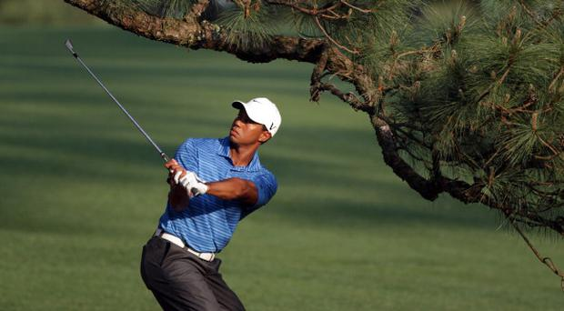 Tiger Wood under The Eisenhower Tree during the third round of the 2011 Masters Tournament