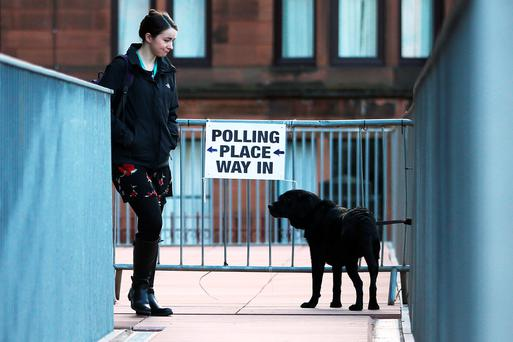 A member of the public looks at a dog tied to railings after voting at a polling station on May 7, 2015