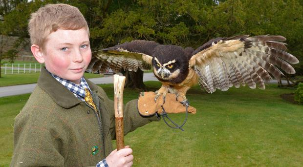 Pictured at the announcement of the Northern Ireland CountrySports Fair at Scarvagh House is AJ Mills from Scarva and Ralph the Owl