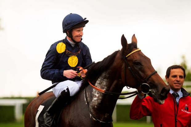Storm force: Ulster jockey Pat Cosgrave and Storm The Stars after winning the Cocked Hat Stakes at Goodwood