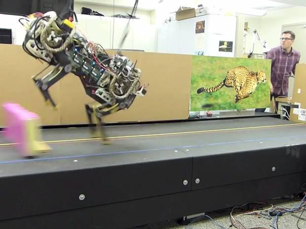 Robotic cheetah: Jumping robots can leap over things half their height and gets the robots one more step towards taking over