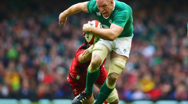 Last hurrah: Paul O'Connell will retire from Irish duty after World Cup