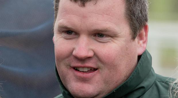 On form: Gordon Elliott has a strong hand at Downpatrick