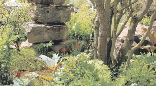 Award Winner: Dan Pearson's garden - a monumental evocation of the rockery and trout stream at Chatsworth