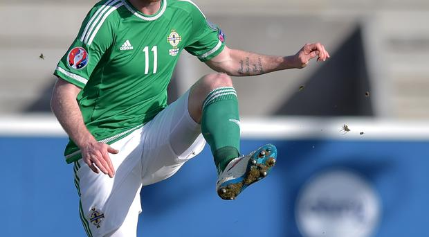 Fifty up: Chris Brunt reaches a landmark of appearances for Northern Ireland tomorrow night