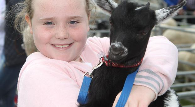 Heather McCall with her Pigmay Goat called Oreo at Armagh Show... Pic Kevin McAuley/McAuley Multimedia