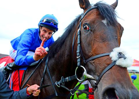 Winning pointer: William Buick celebrates winning the 150th Dubai Duty Free Irish Derby on Jack Hobbs
