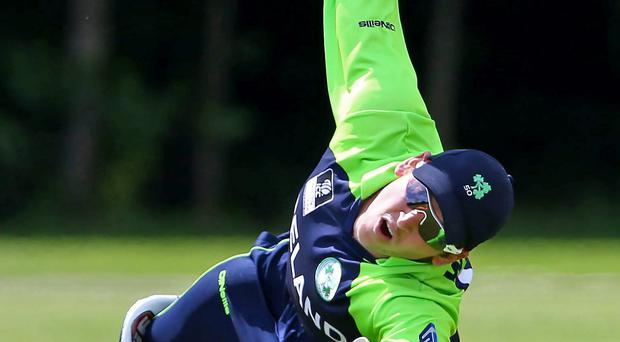 Over and out: Ireland wicketkeeper Gary Wilson takes a catch but they let victory slip through their fingers INPHO