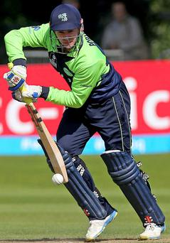 Falling short: William Porterfield hit 28 for Ireland but Hong Kong went on to claim a five-run win at Malahide in the ICC World Twenty20 qualifier