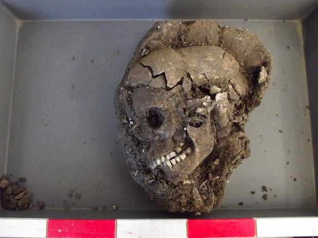 Rare skeleton of a Bronze Age child has been found by University of Reading archaeologists excavating Wilsford Henge in the Vale of Pewsey, Wiltshire
