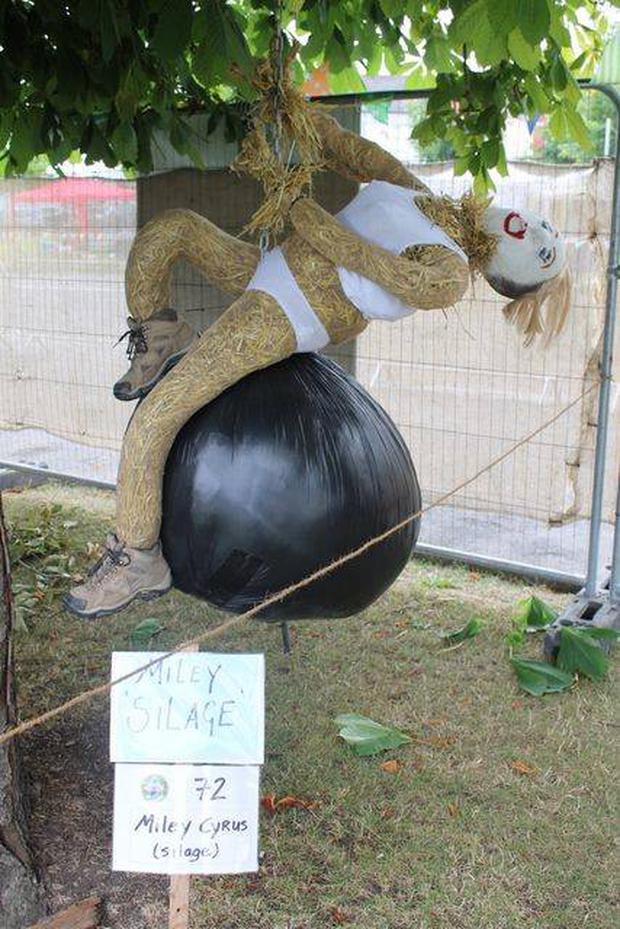 Is that you Miley? 'Miley Silage' won first place in last year's Most Humorous award. Photo: Durrow Scarecrow Festival