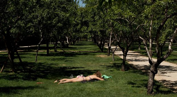 A woman sunbathes in a park (file pic)