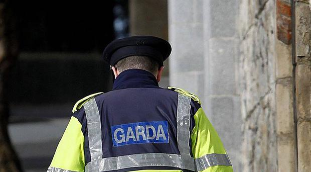 Gardaí obtained the advice of medical experts before making the arrest