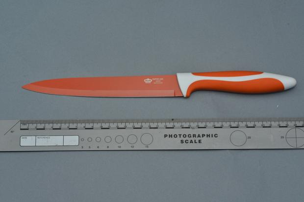 PSNI issue a photograph of knife they believe is similar to the one used to stab Jennifer Dornan in Dunmurry Belfast