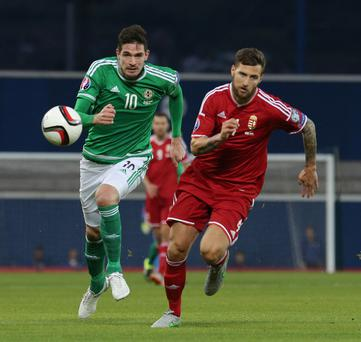 On the chase: Kyle Lafferty races for the ball with Hungary's Tamas Kadar