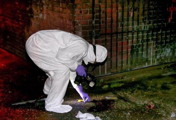 Forensic officers at the scene of a shooting in Westrock Parade area of west Belfast. Photo: Kevin Scott