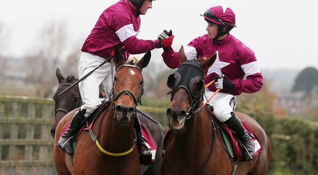 Rich pickings: Paul Carberry and Road To Riches (left) after winning last year's JNwine.com Champion Chase at Down Royal