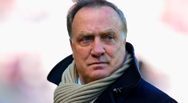 Stepped down: Dick Advocaat has quit his role at Sunderland