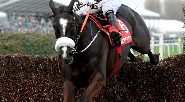 Class acts: Don Cossack, being ridden to victory by now-retired Ulster great Tony McCoy in April's Melling Chase at Aintree, is set to star in Saturday's Down Royal Festival feature