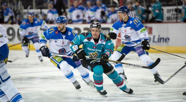 Fit Fodder is to supply the Belfast Giants