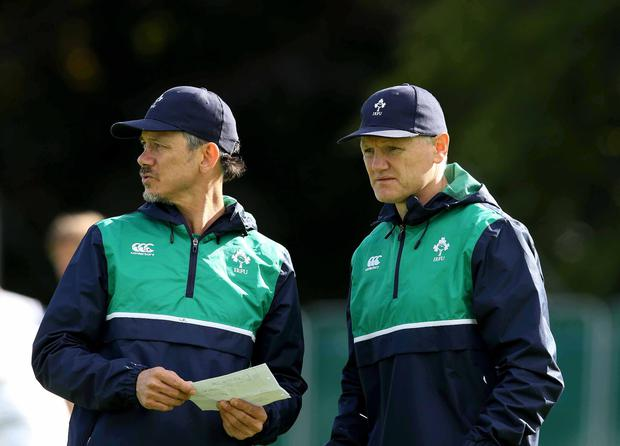 Double act: Les Kiss and Joe Schmidt led Ireland into the World Cup but it ultimately ended in quarter-final disappointment
