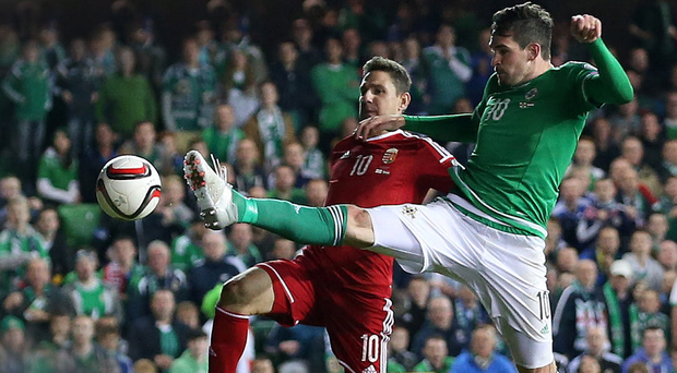 At a stretch: Kyle Lafferty has starred for Northern Ireland but isn't being given the chance to shine at his club Norwich