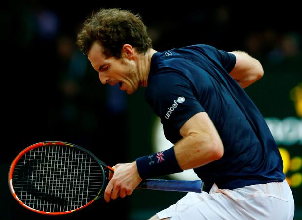 It's mine: Andy Murray celebrates victory with a trademark salute in his Davis Cup singles match against Ruben Bemelmans of Belgium