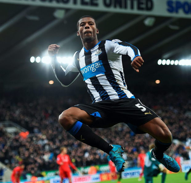 Newcastle goal hero Georginio Wijnaldum celebrates after handing under-pressure boss Steve McClaren a lifeline as the Magpies ended in-form Liverpool's improved run under Jurgen Klopp