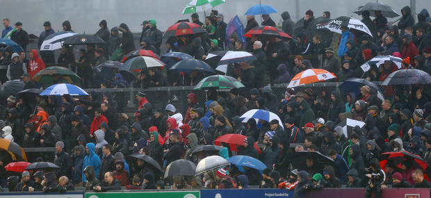 Crowded house: Some of the thousands of fans who attended the Ulster Club Championship semi-final earlier in the year