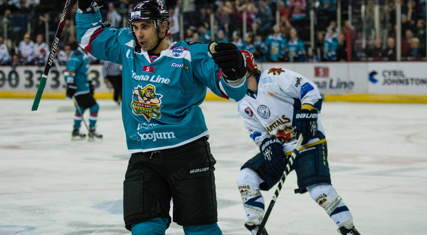 Rallying call: James Desmarais wants the Belfast Giants to unwrap as many points as possible over the festive schedule