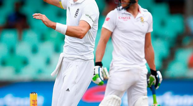 Hitting the heights: Steven Finn celebrates taking the wickey of South Africa's Faf du Plessis
