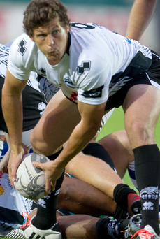 Try that: Luke Burgess crossed the line in Zebre's victory