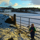 Mason in the snow with Slemish mountain in the background. 15/01/2016. Pic: Ruth Dowds