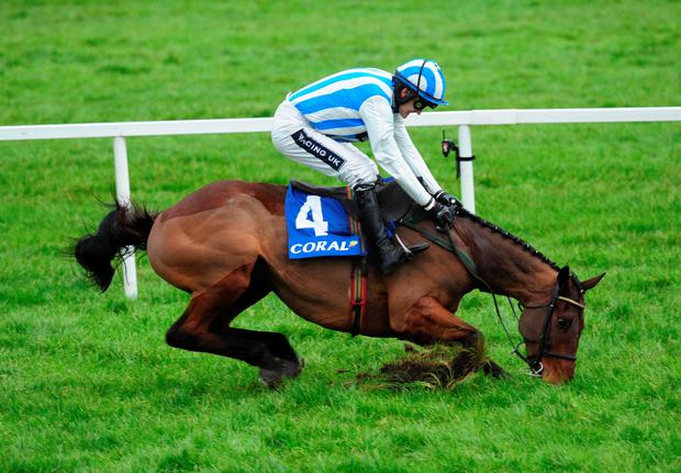Down but not out: Ruby Walsh makes an amazing recovery on Killultagh Vic to gain a dramatic triumph at Leopardstown