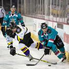 On the run: Belfast Giants ace Darryl Lloyd aims to break clear during his side's Challenge Cup quarter-final victory