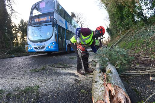 Killyleagh Road, Downpatrick, was closed due to a fallen tree. Picture By: Arthur Allison.