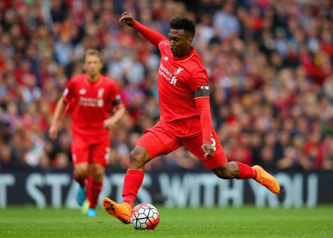 On the sidelines: Daniel Sturridge has played just 106 minutes under Jurgen Klopp as he battles with injury problems
