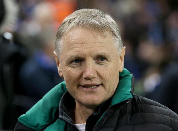 Another role: Joe Schmidt could coach the Lions