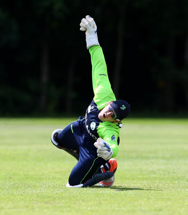 Special milestone: Gary Wilson reached 200 games for Ireland in the third and final Twenty20 international against Papua New Guinea in Townsville, Australia