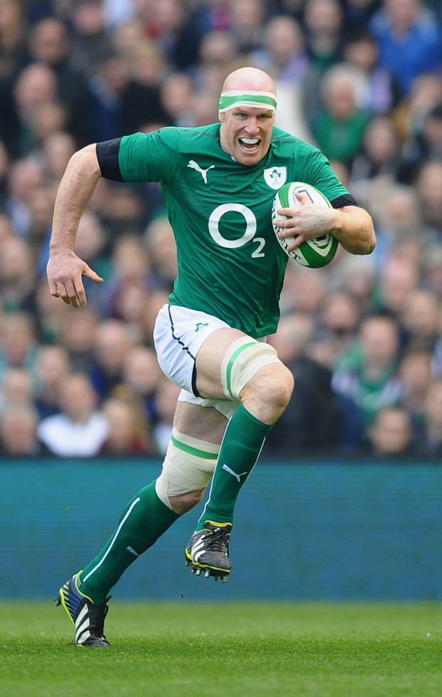 Out of his hands: Paul O'Connell has been forced into retirement by the injury he picked up playing for Ireland in the World Cup