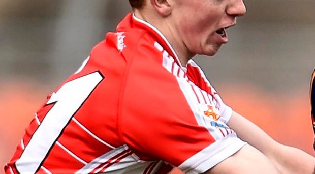 To the fore: Daniel Kerr is key for St Patrick's Academy